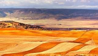 uit Ribera del Duero