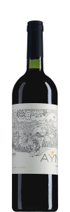 Malbec Uco Valley Ayni