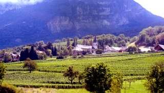Loepzuivere Savoie