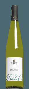 Alto Adige Sauvignon Blanc