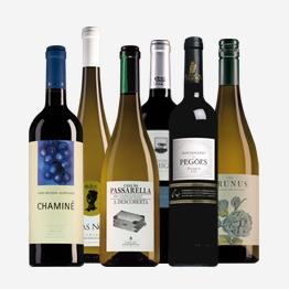 Portugees Wijnpakket