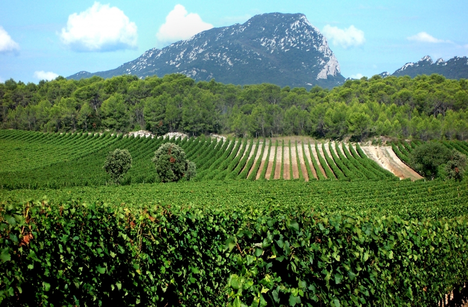 Verbluffende Languedoc